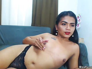 Sexy shemale camgirl in disastrous underclothes stripping exhausted enough masturbating
